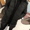 冬の定番人気 素敵なダウンコート 着用手カッコイイ