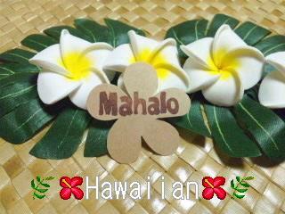 ハワイアン◆プルメリア*MAHALO*クラフトシール大きめ