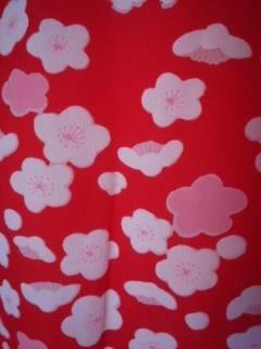 赤紅白*梅長襦袢化繊袷チョー美品小振袖
