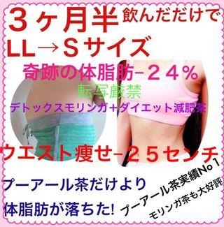 スペシャル減肥茶プーアール10+デトックスモリンガ2