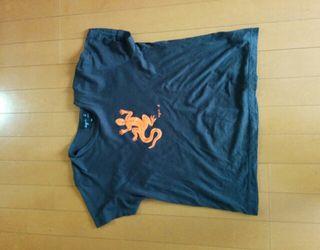 正規品未使用アニエスベーの最高級Tシャツ