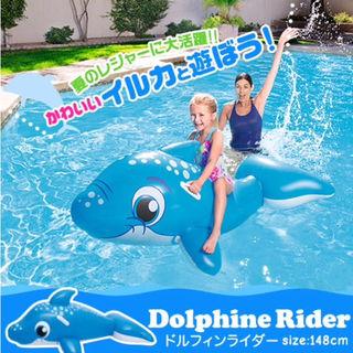 【送料無料】海にプールに!ドルフィンライダー