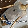 新品EGOIST×salireクロスキャミサマーニット