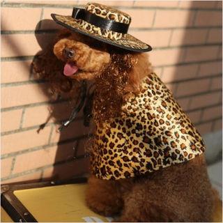 犬服ワンピのドレス&帽子セットMサイズPF31