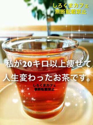 【30日分】飲むだけ簡単ダイエットルイボスティー