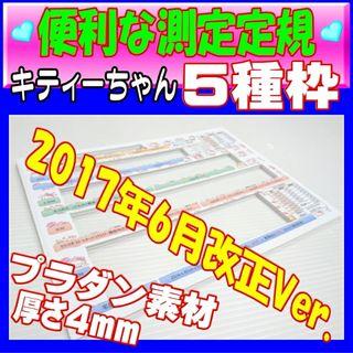 測定定規2018年最新版 新5種枠(キティーちゃん)
