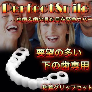 パーフェクトスマイル 下の歯専用カバー