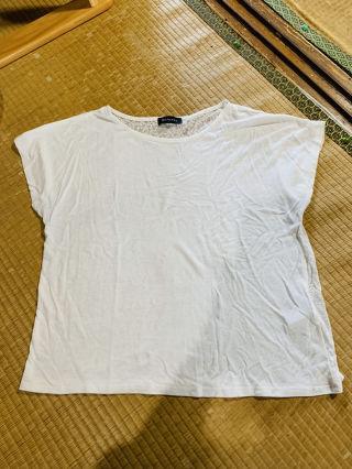 [美品] EGOIST エゴイスト バック透けTシャツ