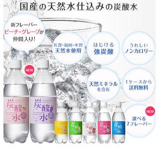 【送料無料】国産 天然水仕込みの炭酸水(500ml 24本)