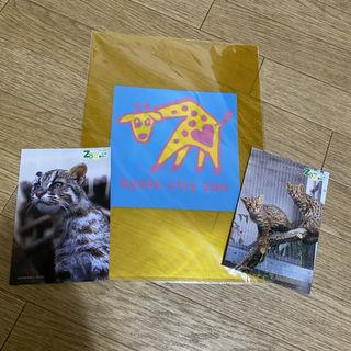 京都動物園 クリアファイル ポストカード