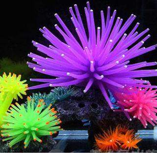 光る 珊瑚 海藻 植物 アクアリウム ペット インテリア