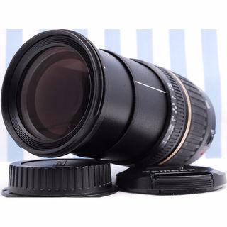 ☆超万能人気レンズ TAMRON AF 18-200mm