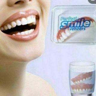 新品 仮歯 さし歯 つけ歯 入れ歯