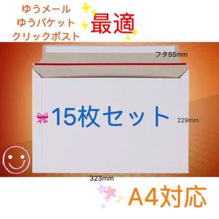 セール A4サイズ封筒 ビジネスレターケース 15枚