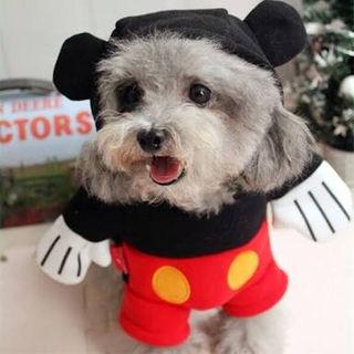 ミッキー 犬服