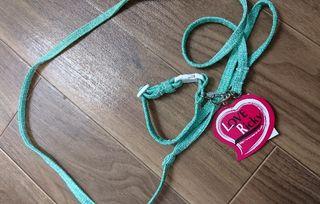 新品ペット犬パピー用首輪&リードツイードグリーン