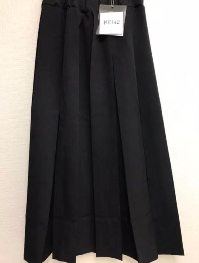 太プリーツ ロング スカート モード系デザイン
