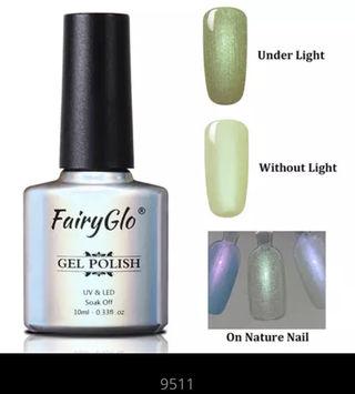 FairyGloシェルの輝き10ml 9511
