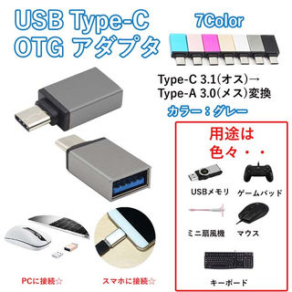 USB Type C OTG対応 アダプタ グレー