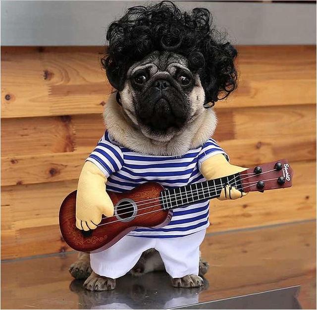 爆笑 犬のミュージシャン Mサイズ