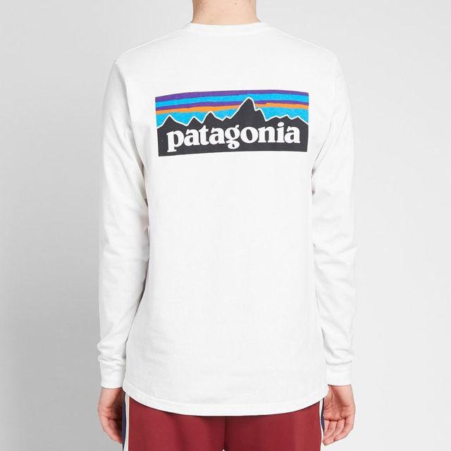 Patagonia ロンT ホワイト  L パタゴニア