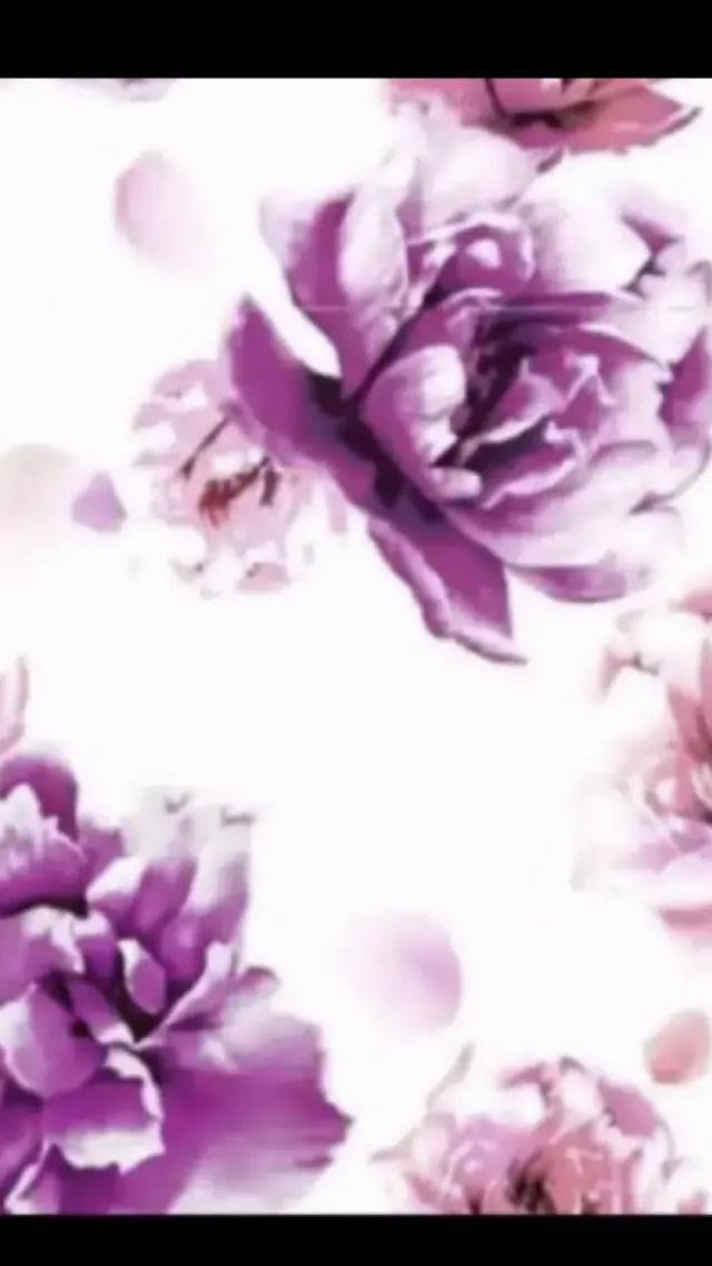 ゅぅしゃん様専用(DaTuRa(ダチュラ) ) - フリマアプリ&サイトShoppies[ショッピーズ]