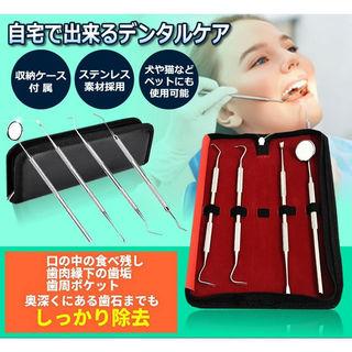 本格 デンタルケアセット 歯のいろは ステンレス ツール