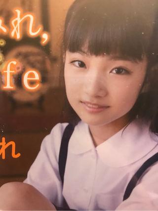 河合すみれ Noすみれ,No Life 未開封DVD