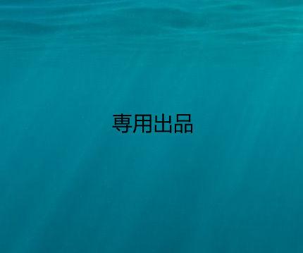 専用出品 - フリマアプリ&サイトShoppies[ショッピーズ]