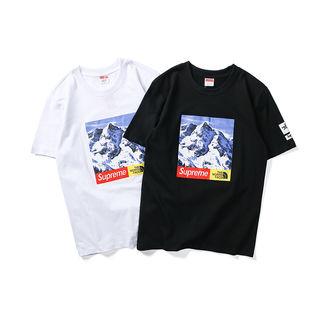 コラボ マウンテンTシャツ 人気