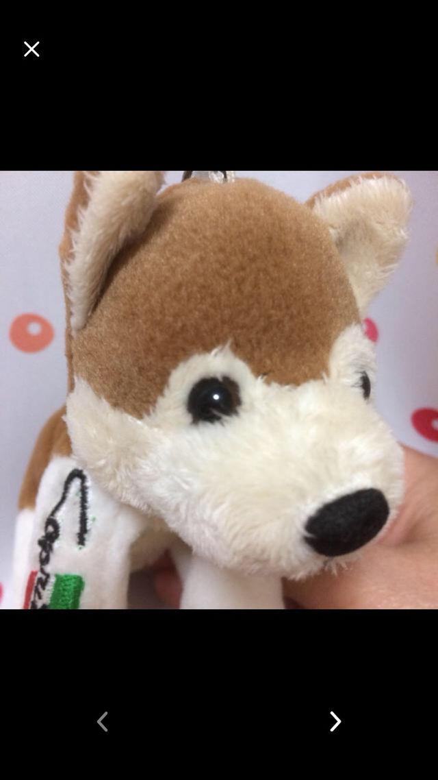 わんちゃん キーホルダー カプリチョーザ わんこ 犬 いぬ