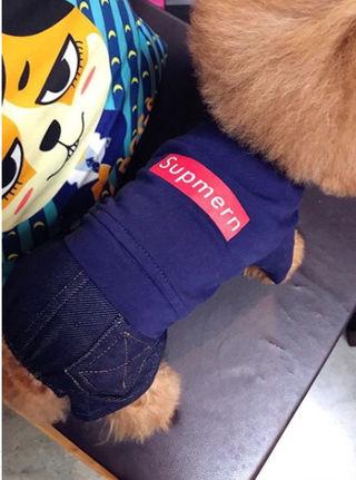ドッグウェア 犬服 小型犬 中型犬 ロンパース つなぎ