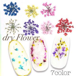 ネイル レースドライフラワー 7色セット 小花 押し花