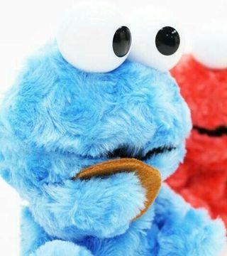 おしゃべりクッキーモンスター