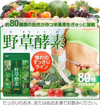 醗酵・熟成野草酵素美容ダイエット2袋セット