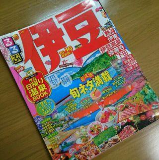 るるぶ伊豆15~16年版