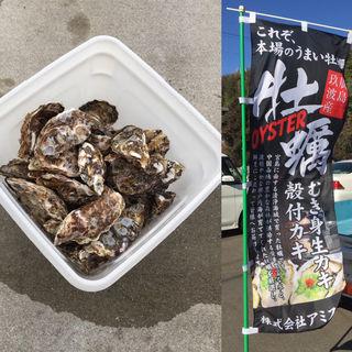 本場 広島県産 殻付き牡蠣 20個 朝採れ