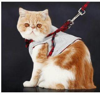 猫 キャット ハーネス コットン 洋服 タイプ S