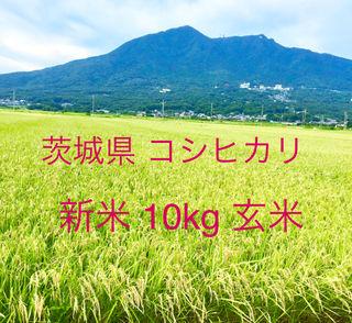 新米茨城県 コシヒカリ  玄米 10kg お米