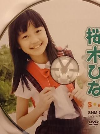 桜木ひな「同級生の妹2」DVD中古品