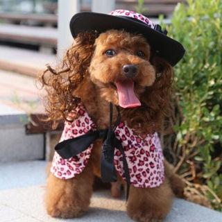 犬服ワンピのドレス&帽子セットSサイズPF30