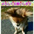Rala_0338様お支払専用ページ